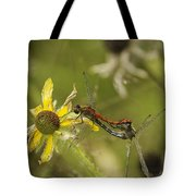 White-faced Meadowhawks Mating Tote Bag