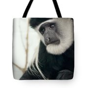 White Faced Monkey Tote Bag