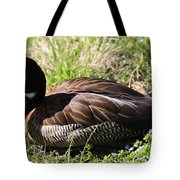 White-faced Whistling Duck Tote Bag