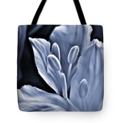 White Feathers Tote Bag
