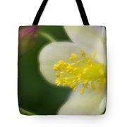 White Flower And Swirls Tote Bag
