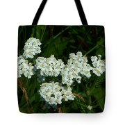 White Flowers In Green Field Tote Bag
