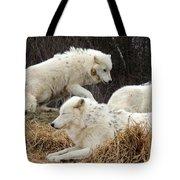 White Furs Tote Bag