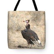 White-headed Vulture  Trigonoceps Occipitalis Tote Bag