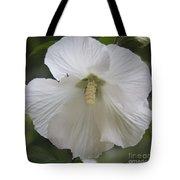 White Hibiscus Squared Tote Bag