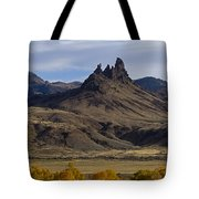 White Horse And Fall Colors   #0354 Tote Bag