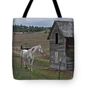 White Horse Near Old Homestead Art Prints Tote Bag