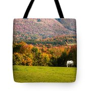 White Horses Grazing With View Of Green Mtns Tote Bag