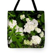 White Hydrangia Beauty Tote Bag