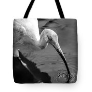 White Ibis - Bw Tote Bag