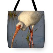 White Ibis In Grass Tote Bag