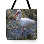 White Ibis In The Swamp Tote Bag