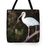 White Ibis On Mangrove Limp Tote Bag