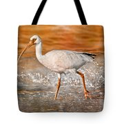 White Ibis Stroll Tote Bag