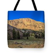 White Knob Mountain Peak Tote Bag
