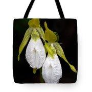 White Lady's Slipper Pair Tote Bag
