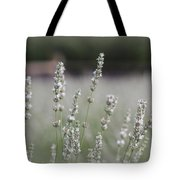 White Lavender Tote Bag