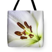 White Lily Close Up Tote Bag by Garry Gay