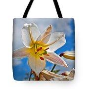 White Lily Flower Against Blue Sky Art Prints Tote Bag