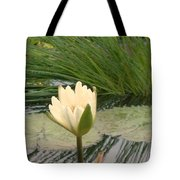 White Lily Near Pond Grass Tote Bag