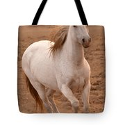 White Mare Approaches Number One Close Up Brighter Tote Bag