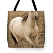 White Mare Approaches Number One Close Up Sepia Tote Bag