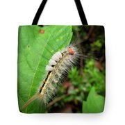 White Marked Tussock Tote Bag