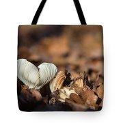 White Mushroom Long Gills Tote Bag