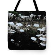White Mushrooms Amazon Jungle Brazil 1 Tote Bag