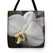 White Orchid Tote Bag by Elisabeth Witte