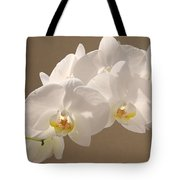 White Orchid Photograph Tote Bag