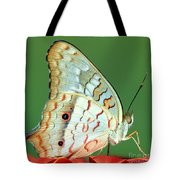 White Peacock Butterfly Anartia Tote Bag