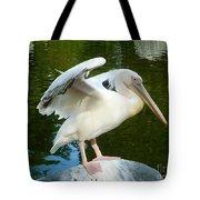 White Pelican Standing  Tote Bag