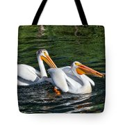 White Pelicans Fishing For Trout Tote Bag by Kathleen Bishop