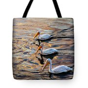 White Pelicans  In Golden Water Tote Bag