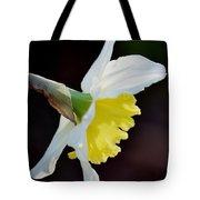 White Petaled Daffodil Tote Bag