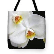 White Phalaenopsis Orchid Flowers Tote Bag