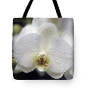White Phalaenopsis With Water Drops 5797 Tote Bag
