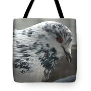 White Pigeon Tote Bag