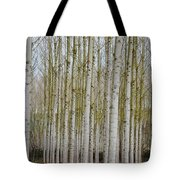 White Poles IIi Tote Bag