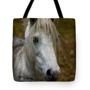 White Pony Tote Bag