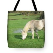White Pony On The Moors Tote Bag
