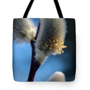 White Pussy Willow In Bloom Tote Bag