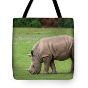 White Rhino 12 Tote Bag