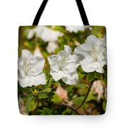White Rhododendron Flowers In Bloom. Tote Bag