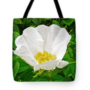 White Rose At Norris Point In Gros Morne National Park-newfoundland  Tote Bag