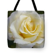 White Rose Named Ray Of Sun Tote Bag