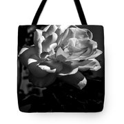 White Rose Tote Bag by Robert Bales