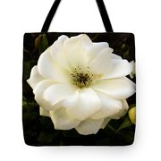 White Rose With Buds Tote Bag