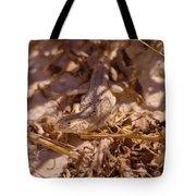 White Sands Lizard Tote Bag